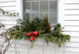 windowchristmasflowers