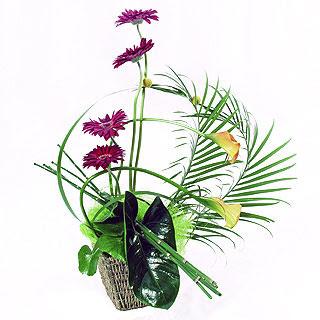 Principles of floral design theflowerpost flower arrangement altavistaventures Images