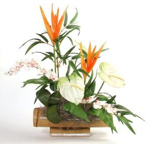 modern arrangement