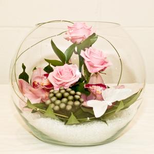 arrangement in fish bowl